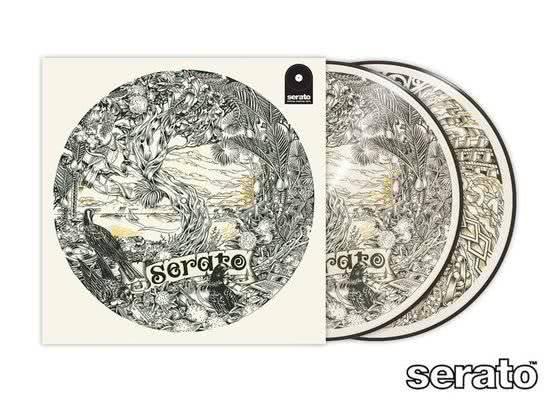 Rane Serato Pressing Dan Tippett Control Vinyl picture Disk (2 Stück)_1